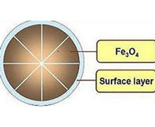 Magnetic Fe3O4 Nanoparticles