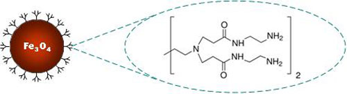 PAMAM Magnetic Nanoparticles Structure