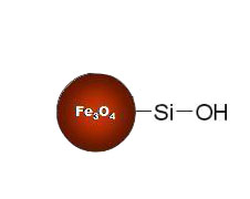 Silanol-Functionalized Magnetic Nanoparticles Structure